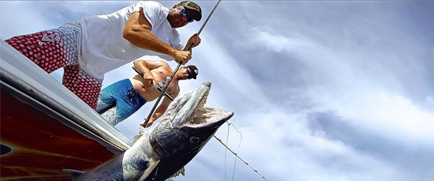 tampa bay deep sea fishing charters